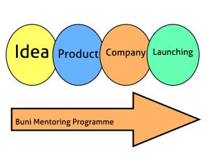 Mentor-ship Programme Model - Blank-